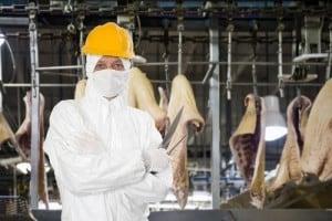 Hinter den Kulissen der Fleischindustrie: Man in weißem Schutzanzug und gelbem Helm posiert mit Fleischermesser vor geschlachteten und halbierten Tieren