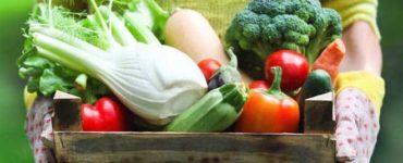 Frau in grüner Gartenkleidung trägt eine Holzkiste voller frischem Gemüse