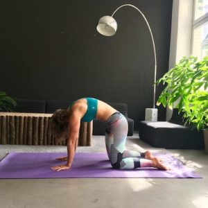 Frau macht Yoga Cat and Cow auf lila Trainingsmatte