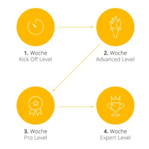 Grafik zeigt alle 4 Phasen von Fit ins Neue Jahr